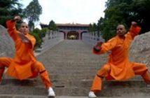 2 professeurs de Kungfu s'entrainant à Fawang