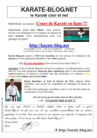 Affiche de Karate-blog.net