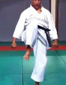 Hiza Geri, le coup de genou