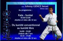 Traditional Karate Course