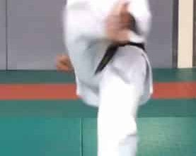 Mikazuki Geri, The Crescent Kick